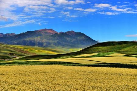 thatcher: Skyline of qilian mountains  Stock Photo