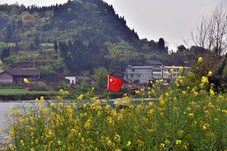 superficie: área de ECO-agrícola en un paisaje Chongqing Tongnan Foto de archivo