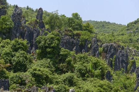Sinan Stone Forest, Guizhou Imagens - 106544111
