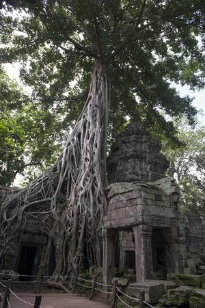 Angkor Thapung Temple Imagens - 110609434