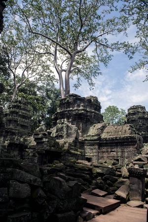 Angkor Thapung Temple Imagens - 110609440