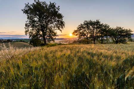 Tuscan landscape at sunrise in backlight Imagens