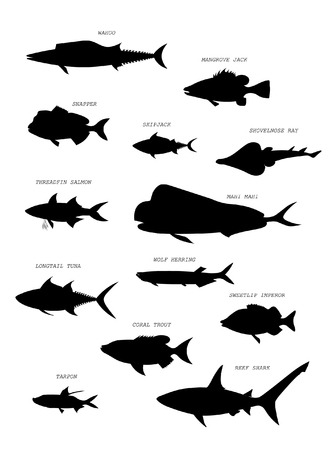 Australian fish silhouettes with names. Vector set.