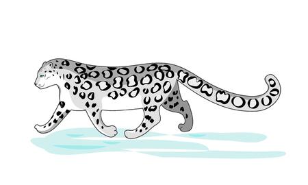 Irbis walkng on snow. Color cartoon vector illustration. Illustration