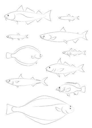 Silhouettes de poissons de l'Atlantique Nord (morue, flétan, aiglefin, saumon, sébaste, maquereau, hareng). Ensemble d'images de dessin vectoriel.