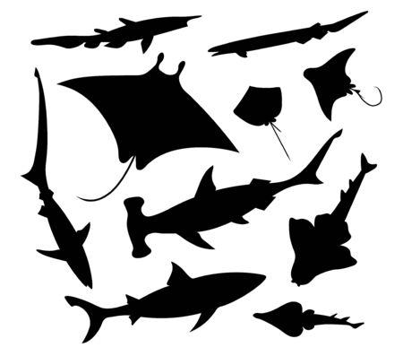 Sea fish (goblin, frilled, fox, angel, reef Sharks, common stingray, shovelnose and eagle ray, manta). Vector illustration silhouettes image set. Vektorgrafik