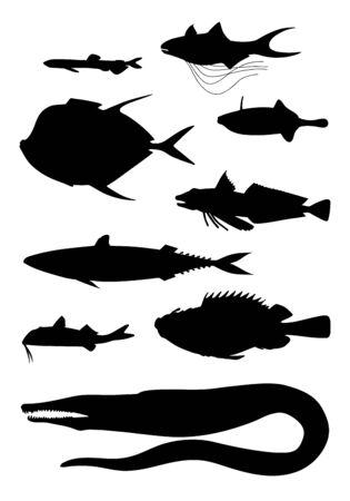 Différentes formes corporelles de poissons de mer (filet, maquereau, baliste, trigla, vomer, murène, brochet congre, rascasse, rouget). Ensemble d'images vectorielles silhouette noire.