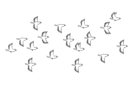 Flock of sparrow birds. Vector silhouette image. Stok Fotoğraf