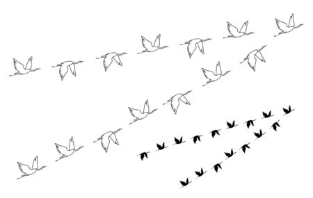 Flock of crane birds. Vector silhouette image. Stok Fotoğraf