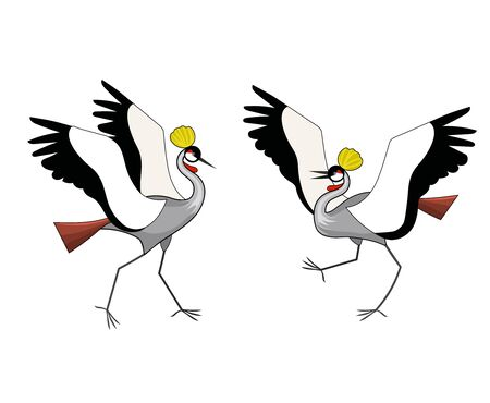 Two crowned cranes are fighting. Vector color image.