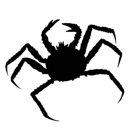 Alaskan king crab. Vector hand drawn black silhouette image.