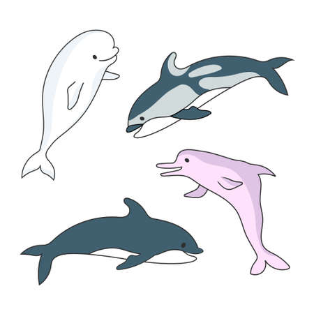 Four Dolphins. Vector drawing cartoon color image.