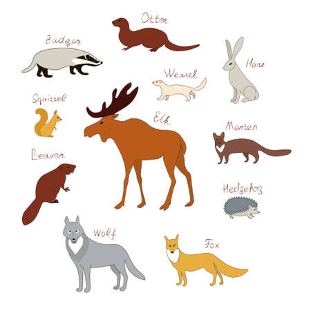 Forest animals. Vector color drawing silhouette image set. Иллюстрация