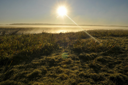bogs: Poland  Bogs biebrzanskie