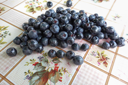 fruit trade: July harvest of forest bilberries