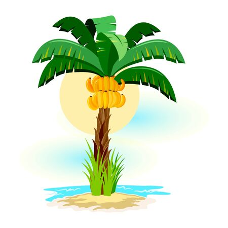 Tropical landscape with sunny sky, palm trees on beach. Summer vacations in tropics with plants, ocean or sea waves, sand resort. Vector clipart isolated on white for tourist, travel projects.