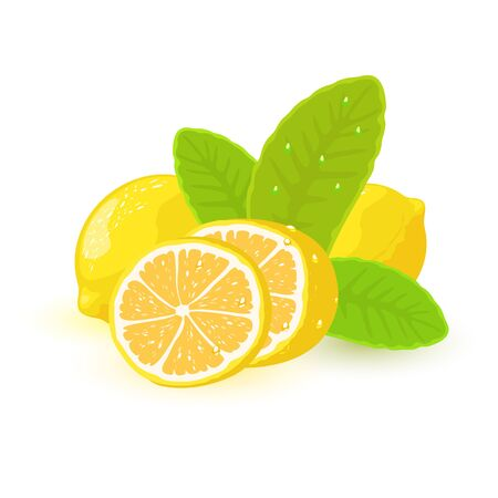 Vector image shows beautiful large yellow lemons and cut slice with green leaves cartoon isolated illustration Ilustracja