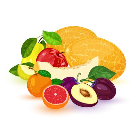 Vector fruits and berry: apple, pear, mandarin, tangerine, grapefruit, plum, melon. Vegetarian, vegan food isolated on white. Healthy meal Organic fresh products from market Summer harvest
