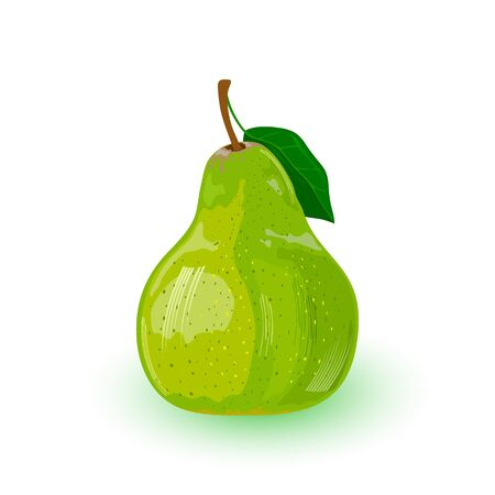 Fresh green pear with leaf. Pomaceous fruit using for cooking jellies, jams, juice, perry, cider. Cartoon vector icon isolated on white background. Healthy snack. Ingredient for vegetarian kitchen. Ilustração