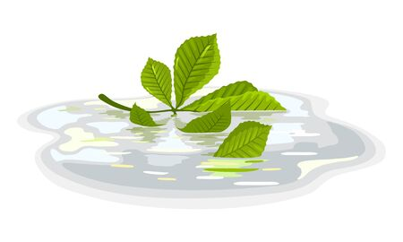 Green leaves of chestnut floating in puddle after rain. Plant is in water. Calmness, tranquillity, beautiful nature. Autumn sale element design. Vector cartoon illustration isolated on white.