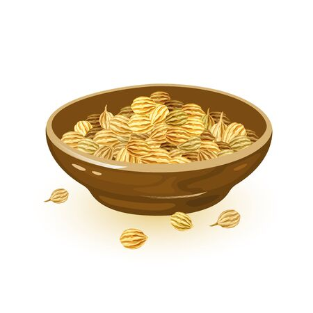 Coriander seeds are in brown ceramic bowl. Spice having warm, nutty, spicy flavour and using in cooking. Cartoon vector illustration isolated on white for packing, cookbook, recipes, market labels.
