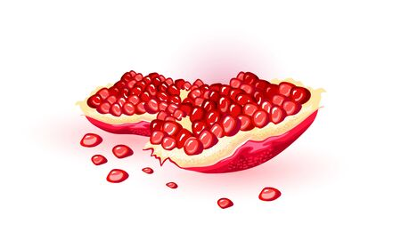 Split fresh pomegranate with red ripe gem-like seeds. Puniceous sweet fruit using for juice, smoothie, wine, meal garnishes, cocktails, alcoholic beverages. Vector cartoon illustration on white.