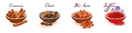 Vector set with assortment of brown, red asian dried spices, condiments and lettering cinnamon, cloves, star anise, saffron. Cartoon collection isolated on white background.