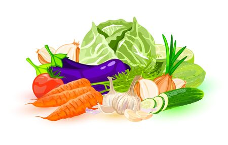 Big set with different vegetables: red tomato, eggplant, garlic, cucumber, carrot, courgette, white cabbage, onion. Vector cartoon Can be used for advertisement, menu of vegan, vegetarian cafe