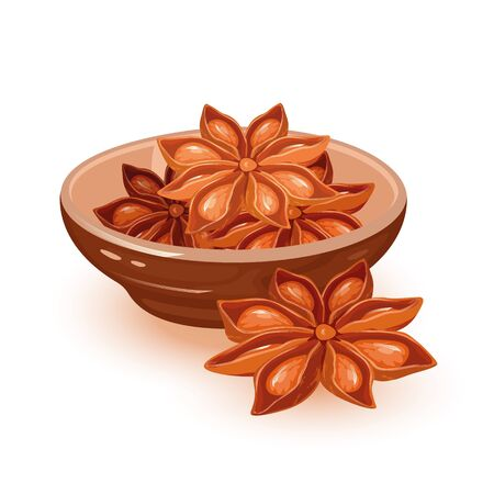 Dry star anise seeds or badian are in ceramic bowl. Natural condiment, asian spice using in cooking and as oil in cosmetics, perfumery. Vector cartoon illustration isolated on white background. Çizim