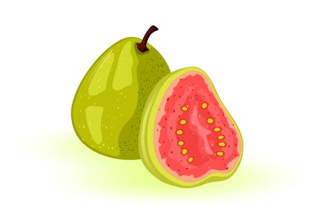 Ripe guava whole and half. Round, oval tropical exotic fruit with green skin and red sweet or sour pulp inside. Ingredient for beverages, sauces, ales, candies, dried snacks, desserts. Vector cartoon
