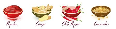 Paprika, ginger, chili pepper, coriander in bowls. Vector isolated set with icons and lettering. Dried condiments, additives, spices using for cooking and treatment in folk medicine, ayurveda. Ilustrace
