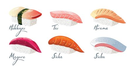 Vector set with japanese dishes from fishes and rice. Hokkigai, Tai, Hirame, Maguro, Sake, Saba sushi with lettering. Collection isolated on white background for menu of restaurant, take away bar.