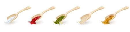 Set of wooden scoops with red, green, yellow spices, seasonings indian mixture with anis stars, sesame, coriander, fenugreek seeds, cardamom, saffron, salt. Vector collection isolated on white.