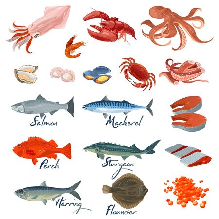 Big vector set with different varieties of marine fishes and seafood specialties, delicacies. Underwater inhabitants, animals. Lettering. Cartoon collection isolated on white background. Векторная Иллюстрация
