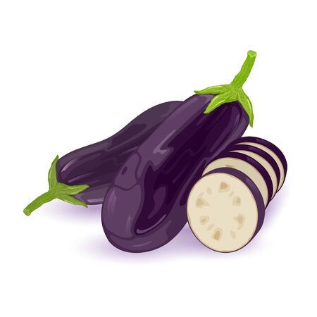 Fresh eggplants, aubergine or brinjal with green stem and sepals. Two whole dark purple vegetables and cut to segments. Vector illustration isolated on white background for packing, recipes.