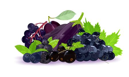 Appetizing stack of fresh, ripe black, dark purple and blue berries, fruits and vegetables with green leaves. Farm market. Summer, autumn harvest, fruitage. Vector illustration isolated on white.