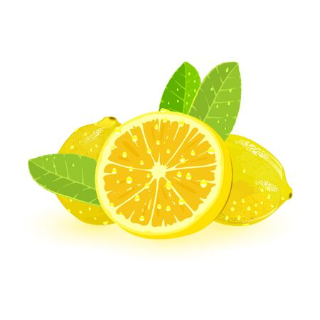 Two whole and one sliced lemons with green leaves. Aromatic yellow citrus fruit with sour flavor. Ingredient for drinks, juices, lemonade, pies. Vector illustration isolated on white background.
