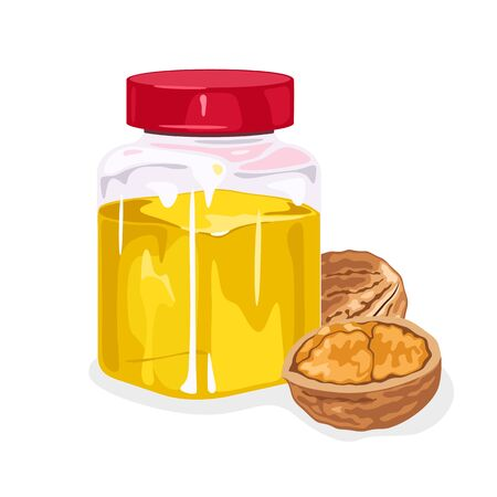 Whole walnut and its half are next to transparent jar closed by red lid with yellow oil. Natural antioxidant. Used in cooking, culinary, soapmaking. Vector isolated on white for packaging design.