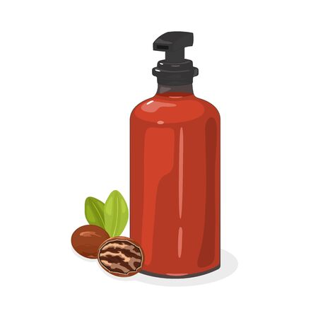 Pecan nut with green leaves whole and without shell are next to red pump glass container containing oil. Natural remedy used for massage, aromatherapy, cooking, cosmetics. Vector isolated on white. Stock Illustratie