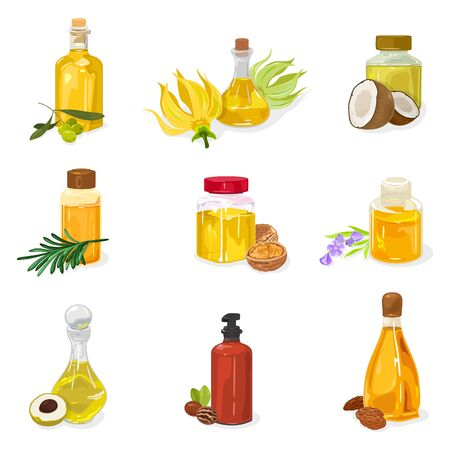 Big set of glass bottles, vials, jars closed by cap, cork with essential oil of olive, Ylang Ylang, coconut, siberian pine, melaleuca, walnut, lavender, longan, pecan, almond. Vector on white.