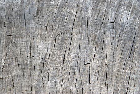 oxidized: textura de la madera se oxida