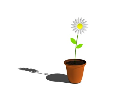 3D Flower in a Pot with shadow photo