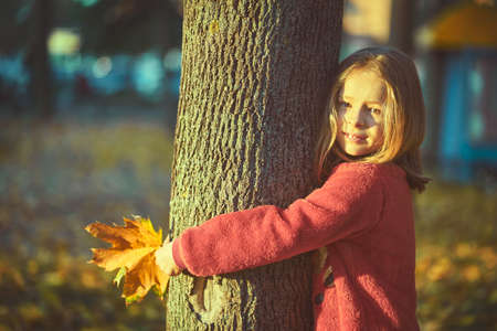Little girl with yellow leaf. Child playing with autumn golden leaves. Kids play outdoors in the park. Children hiking in fall forest. Toddler kid under a maple tree on a sunny October day. 스톡 콘텐츠 - 155309124