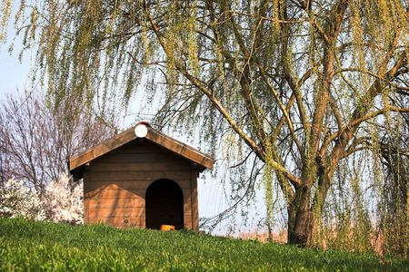 new wooden dog house in the yard Stock Photo - 4666903