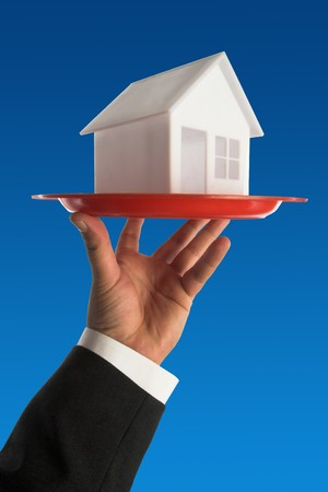 model of house on the tray.real estate concept Stock Photo - 7278848