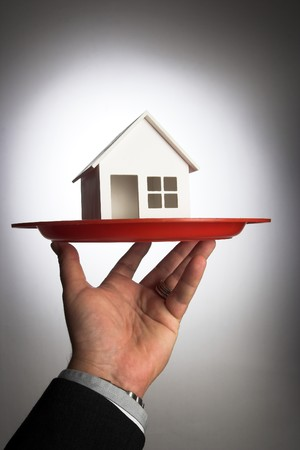 model of house on the tray.real estate concept Stock Photo - 7312660
