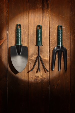 Set of gardening tools on wooden background and spot photo