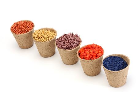 siembra: color de semilla de siembra varia en olla de papel