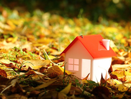 model house amid autumn leaves Imagens - 47588307