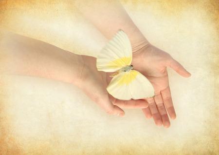 donna farfalla: Farfalla sulla mano donna s Archivio Fotografico